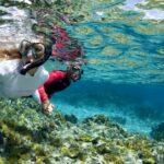 Immersioni a Capo Palinuro